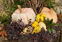 Fall and Halloween ideas / by Lou Ann Boswell
