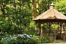 Backyard & Gardening Ideas / by Kathy Adams