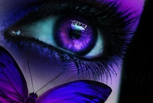 Beautiful Purples / by Carolyn Withem