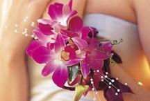 Senior Prom 2013 / by Carolyn Withem