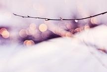 Winter / by Nancy G