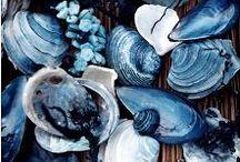 Colours - Blues / by Inga Lucena