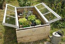 Travaux de jardinage / Quelques idées pour créer et soigner votre petit jardin...
