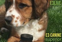 E3 Canine by E3Live / E3 Canine - superior, organic nutrition for dogs!  www.e3live.com