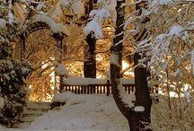 winter wonderland / by Frances Hood