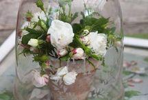 C L O C H E ... / Love these all over the house... / by Janet Copeland