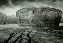 Environmental Art / Art for transforming the world.