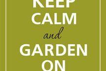 Gardening and Outdoor decor / by Shannon Stewart-Klein