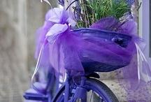 Lilacs...Violets...Purples...