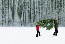 White Christmas / #White #Christmas