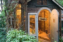 Chicken coops / by vintageholiday