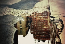 reflections / I have a thing for hidden images  / by Angela Rumel