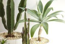 home :: plants