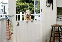 Make an Entrance / by Ann Carmony