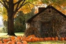 Fall Love / by Brittany Eddins