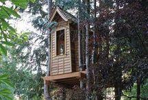 Tree Houses / by Corey Mendez