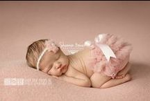 Newborn Photography / by Christine Stephens Diorio
