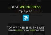Wordress Themes / Collection of the Best WordPress Themes.