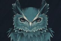 omg owl / by Sarah Boblit