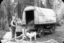 Transportation: Wagons and such / Photos and links for hauling people and freight over land.
