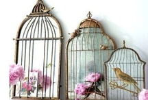 Birdcage art / by Indy Philip