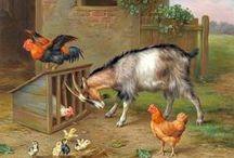 ANIMALS / BARNYARD
