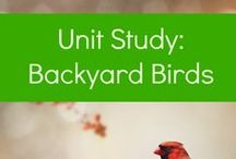 Unit Studies / A collection of pre-made (and mostly FREE) unit studies to use in your homeschool!