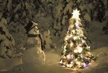 Christmas Holiday Decor - Outdoor / December Decor
