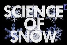 Snow Unit Study / Learn the basics of weather. Enjoy some icy experiments. Test your knowledge of SNOW! We have plenty of frozen fun for your homeschool!