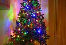 Holidays / by Maxine Jones