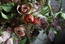 WEDDING | FLOWERS / by Jess Wilcox
