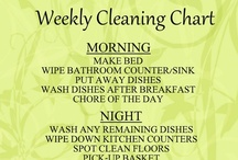 Cleaning Tips and Tricks / by Pat Worden
