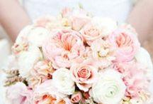 Chris & Court's wedding / by Kellie Alexandra