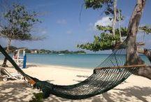 Beach Life- Living the Dream / by Teri Redford