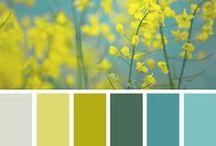 color schemes / by Erin Rose Shaeffer