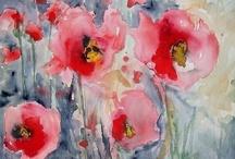 A Poppy Lover