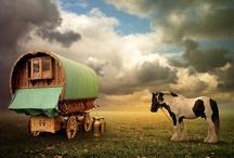 Gypsy Life
