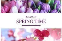SEASON: Spring time