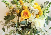 WEDDING colors n flowers / by Lindsay Graves
