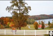 Fall at Whitestone / September, October, and November at Whitestone Country Inn are amazing months with the gorgeous natural colors outside, the beautiful autumn decor inside, and the abundance of fall weddings.