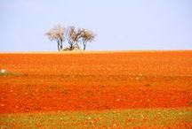 Community of Madrid / Villages in the region of Madrid that you will like to know