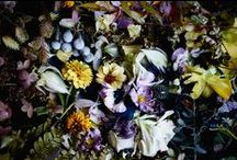 TREND: Moody Florals / Beautiful & Dark large scale florals