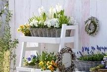 Inspired Garden Ideas