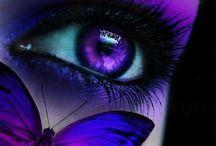 ♔ Prαcтιcαℓℓу Pυrpℓє ιη єνєrу ωαу ♔