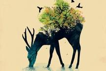 Put a Bird on it / by Tate Leyba