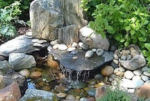 Garden/outdoor spaces / by Heidi Needles