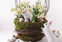 Easter / Bunnies, Chicks, Baskets, Eggs + Inspiration / by Marla Meridith