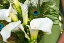 Get Floral