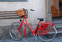i want to ride my bicycle... / by Andrea @FoxInFlats