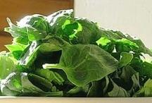 Eat (Salads)